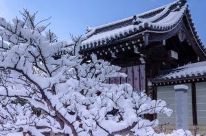 京都 寺院門前の雪