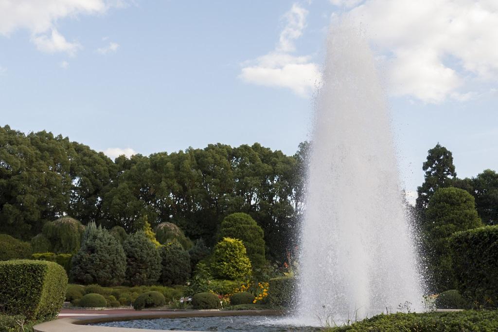 植物園 噴水