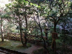 龍安寺 侘助椿