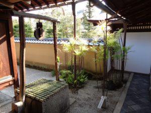 龍源院 方丈の井戸