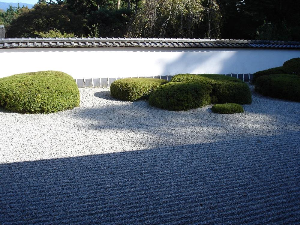 正伝寺 方丈前の庭