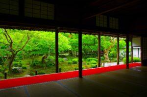 圓光寺の新緑