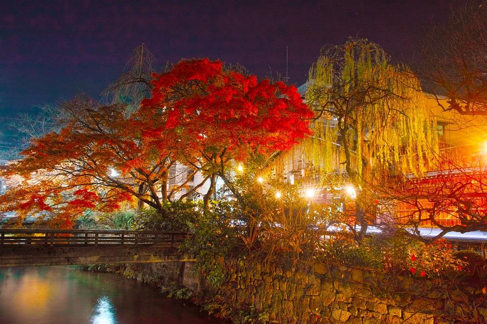 京都 祇園界隈の紅葉