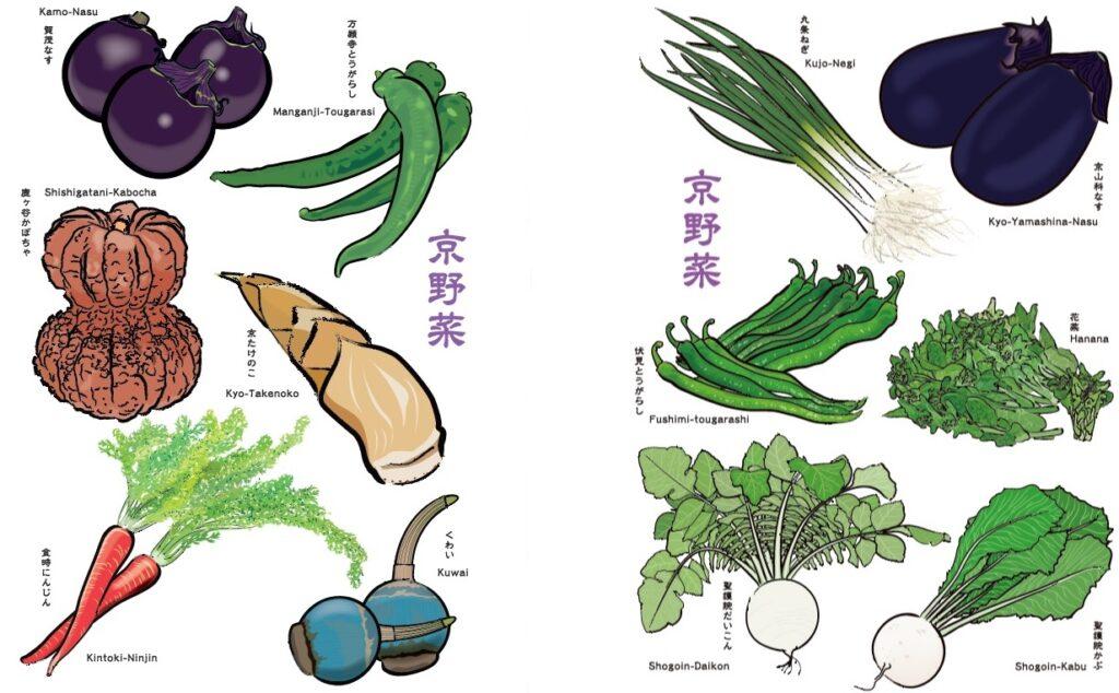 さまざまな京野菜 イラスト