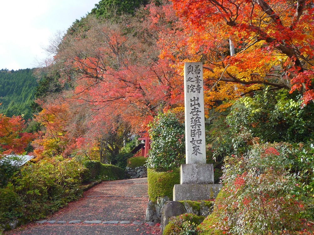善峯寺 境内の紅葉